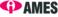 Employment Program (AMES Australia)